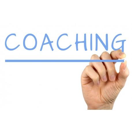Experto en Coaching