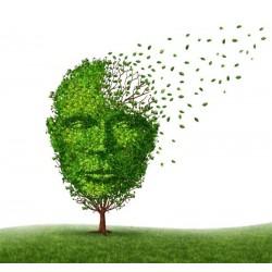 Alzheimer y Otras Demencias  - Trastornos Cognitivos
