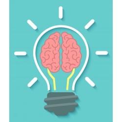 Curso Superior de Psicología Empresarial y Comunicación Universidad Clea