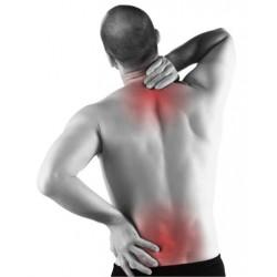 Fisioterapeuta en Patologías Traumatológicas y su Tratamiento- Universidad Clea