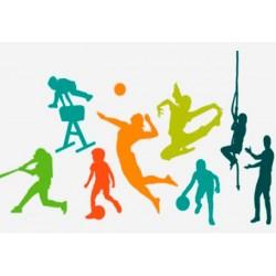 Monitor Actividades  Deportivas